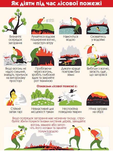 Як діяти під час лісової пожежі