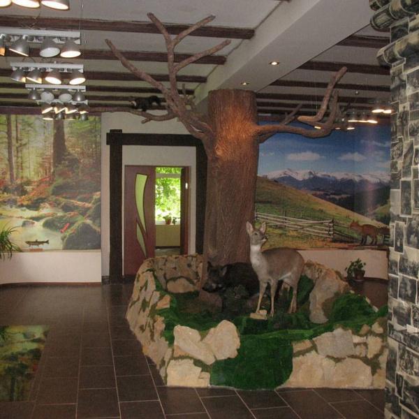 Екотуристичний візит-центр, Яремче