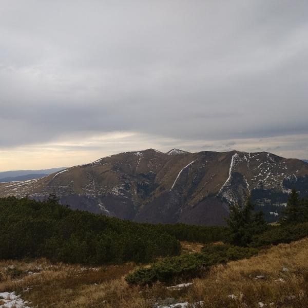 Гора Ясеновець